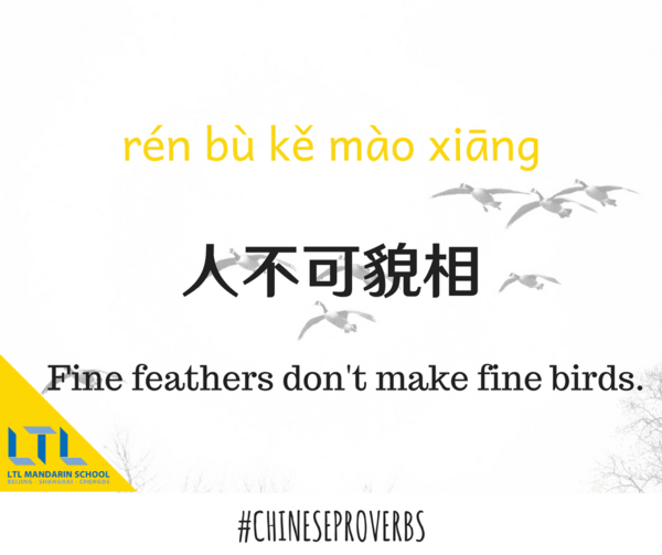 Proverb - fine feathers don't make fine birds