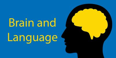 Brain and Language: How Does Language Change Your Brain?