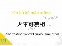 Chinese Proverb - Fine Feathers