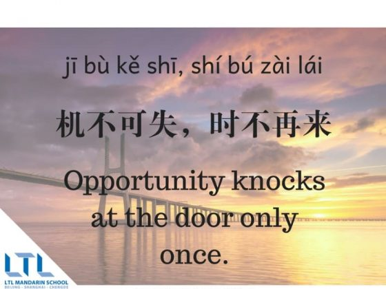 Chinese Proverb - Opportunity Knocks Only Once