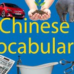 500+ Chinese Vocabulary 📚Your Complete List Thumbnail