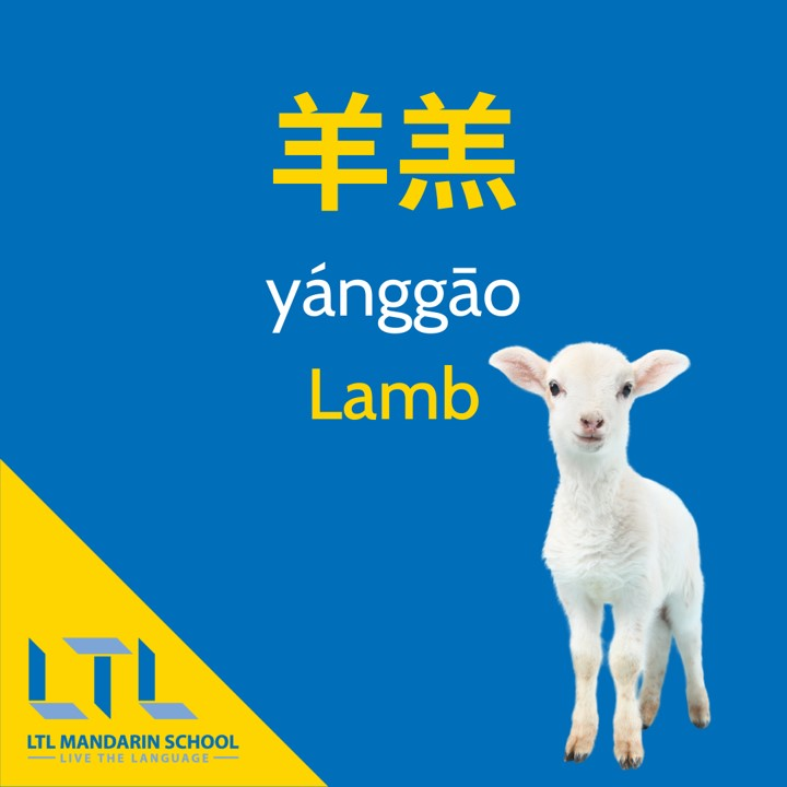 Lamb-in-chinese