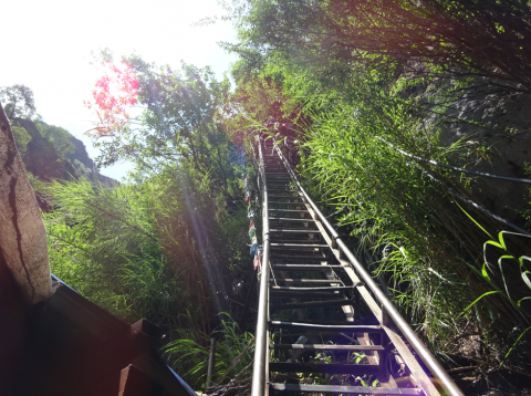 Scary (but fun!) sky ladder at the Tiger Leaping Gorge