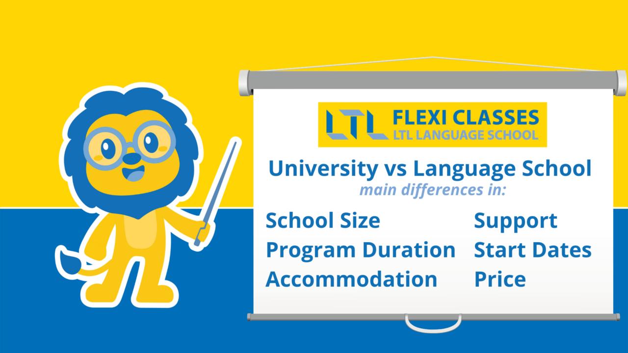 university vs language school - main differences