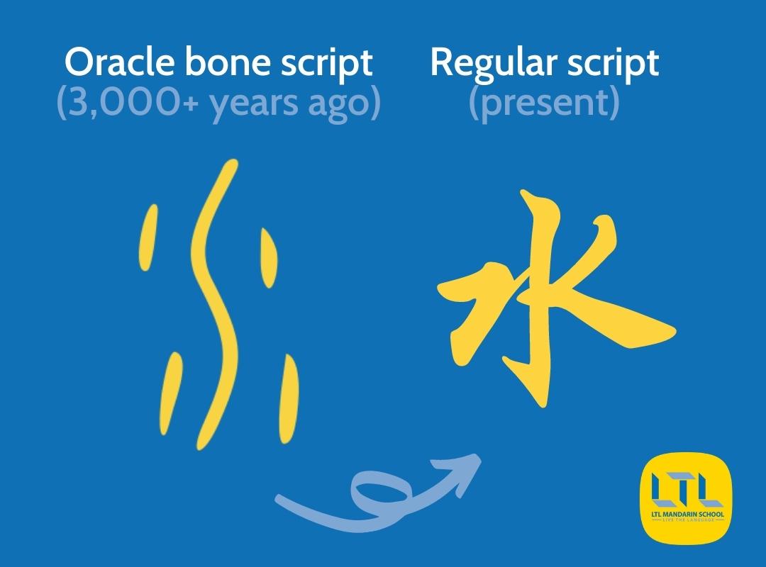 Chinese Vocabulary Quiz