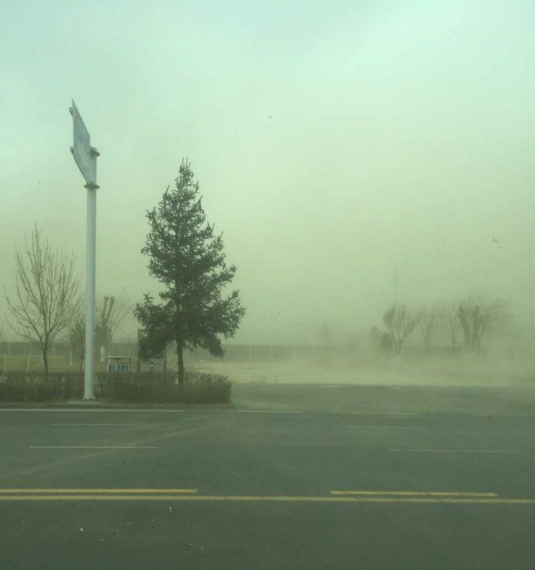 Immersion Training - Sandstorms in Gansu