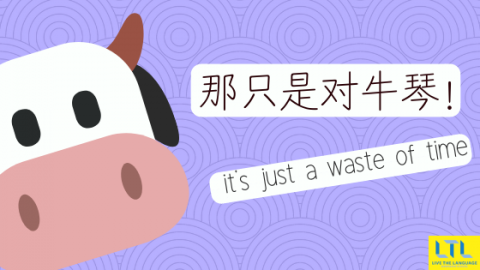 Chengyu - Chinese idioms - 对牛弹琴 Play the lute to a cow