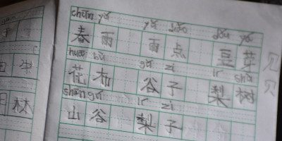 Should I learn Chinese Characters?