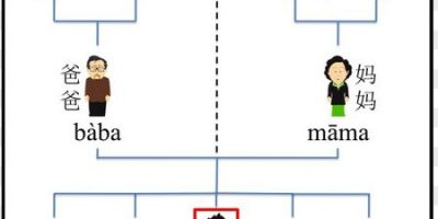 The Unnecessarily Complicated Chinese Family Tree