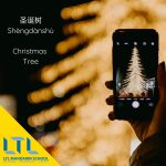 Christmas Tree - Chinese Christmas Vocab