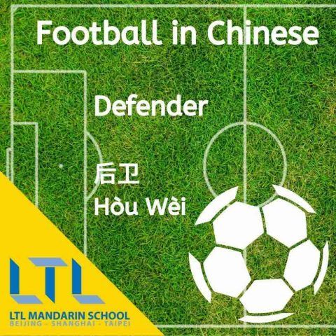 Defender in Chinese