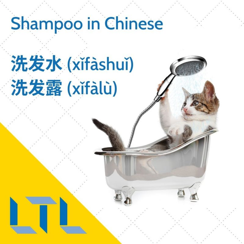 Shampoo in Chinese