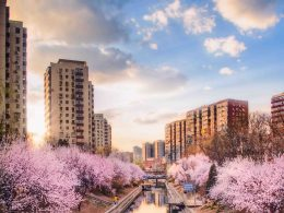 Beijing Canal