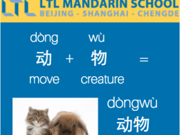 Animal - Learn Mandarin with LTL