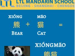 Panda - Learn Chinese
