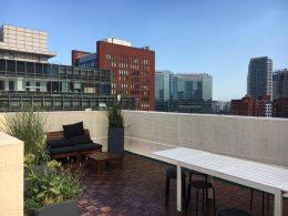 LTL Beijing Rooftop in the Summer