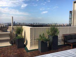 Beijing Rooftop shining bright